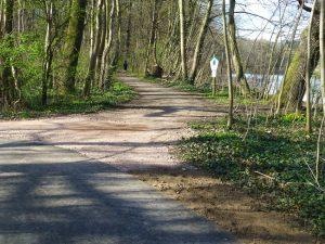 Weg zur Nordspitze3